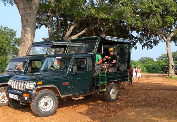 yala jeep